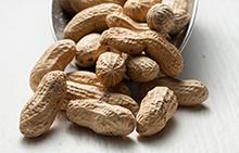 Shop Peanuts